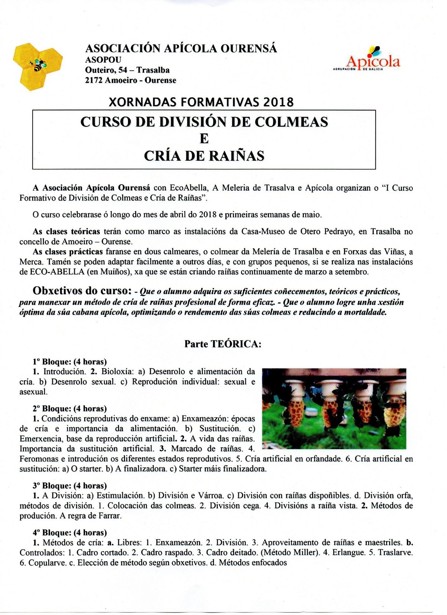 CURSO DIVISIÓN DE COLMENAS Y CRÍA DE REINAS (Amoeiro,  Ourense)